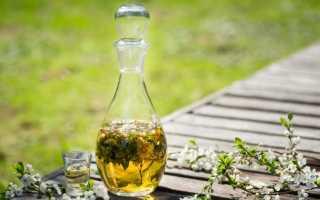 Полезная настойка из самогона и травы зубровки