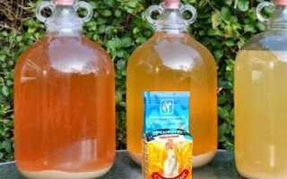 Инструкция по применению спиртовых дрожжей для самогона