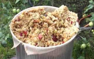 Рецепт как правильно поставить брагу на яблочном жмыхе