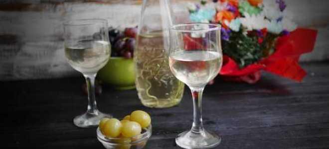 Перегонка вина на самогонку в домашних условиях