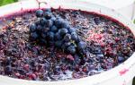 Рецепт приготовления самогона из фруктовых дрожжей