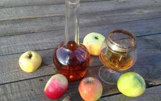 Изготовление яблочного самогона в домашних условиях