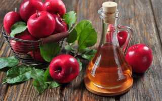 Яблочная настойка на самогоне в домашних условиях