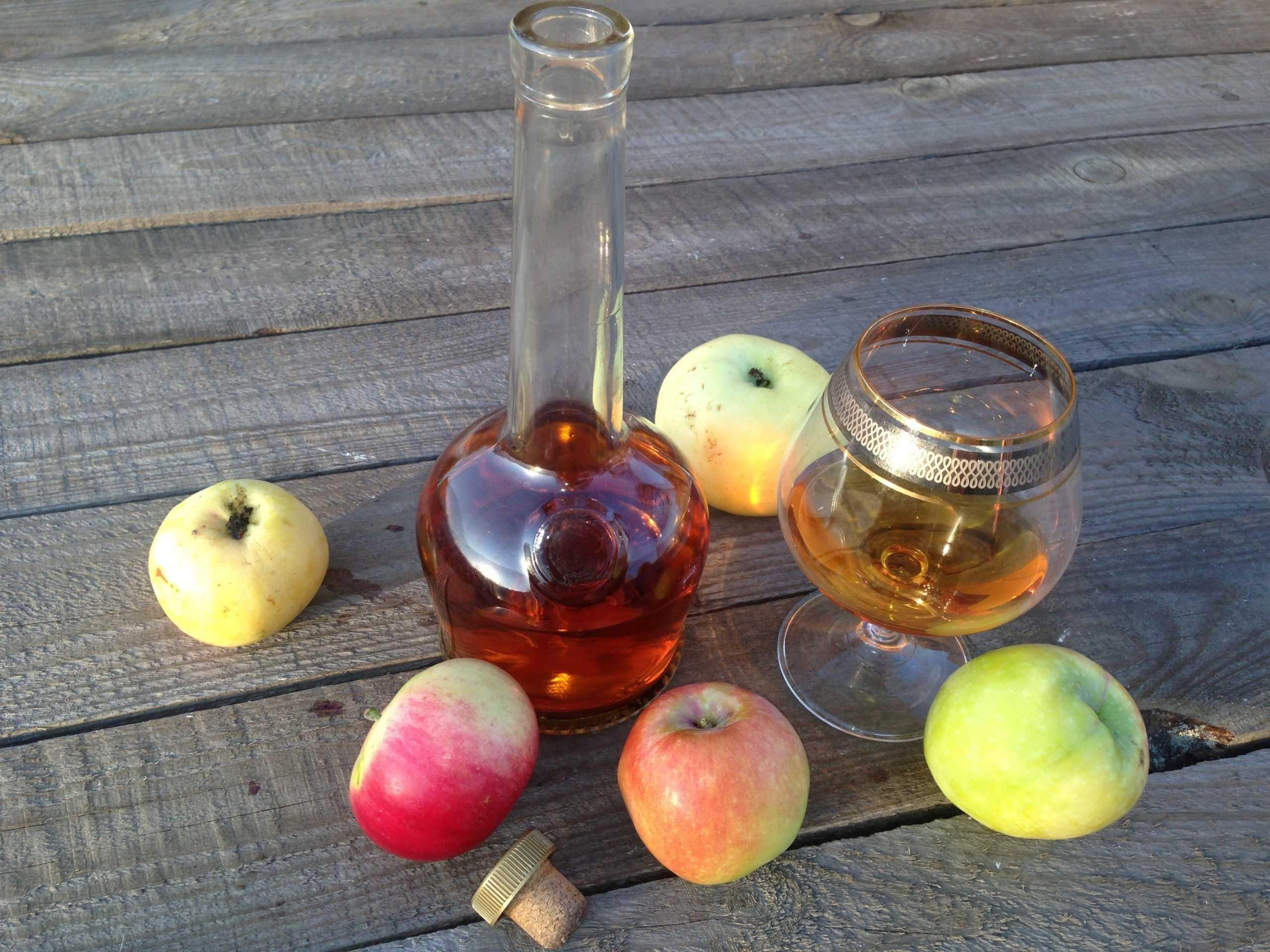 Брага из яблочного сока с дрожжами