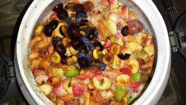 приготовление фруктовых браг