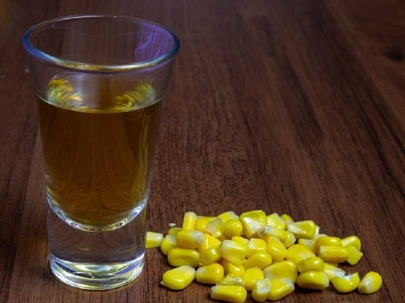 сэм из кукурузы
